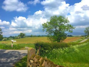 Dunkeld Surrounding Area and Local Walks in Cumbria